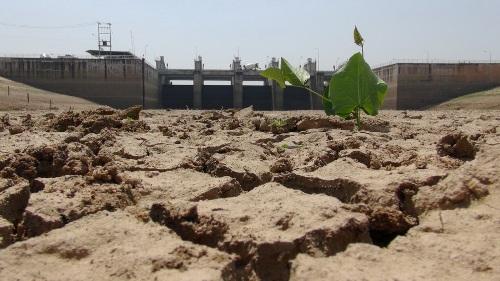 สภาพัฒน์พบภัยแล้งทำจีดีพีภาคเกษตรปี 58 หดตัวร้อยละ 3.8 แถมการจ้างงานเกษตรลดลงร้อยละ 2.7