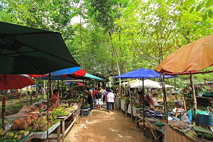 หลาดใต้โหนด ตลาดสีเขียววัฒนธรรมชุมชนเพื่อสุขภาพ