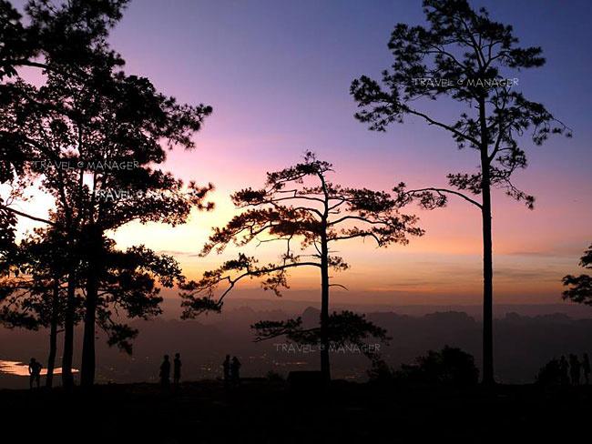 ผานกแอ่น ไฮไลต์จุดชมพระอาทิตย์ขึ้นบนภูกระดึง
