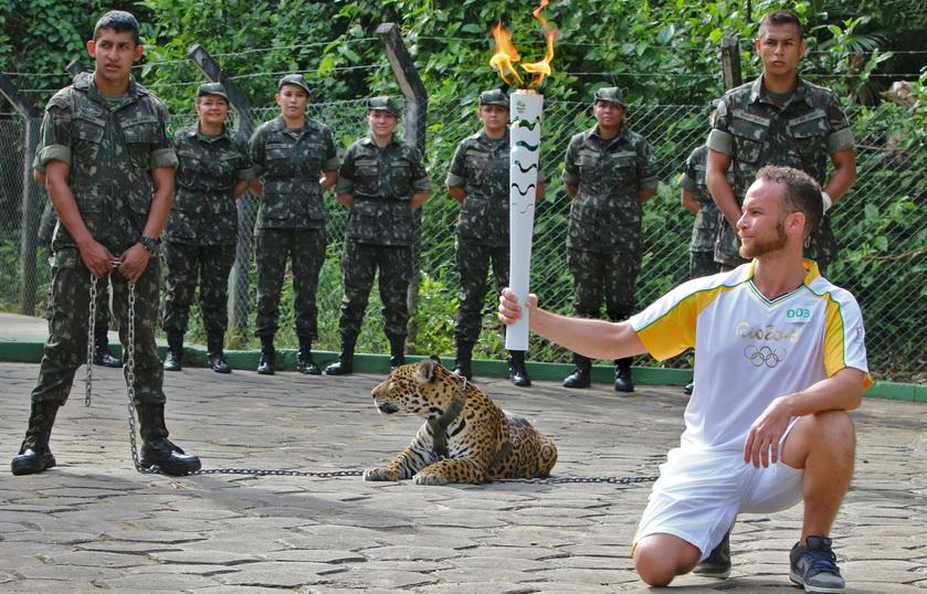"""วิจารณ์ขรม! ทหารบราซิลยิง """"เสือจากัวร์"""" ที่เอามาโชว์ตัวในงานวิ่งคบเพลิงโอลิมปิก 2016 หลังพุ่งทำร้ายสัตวแพทย์"""
