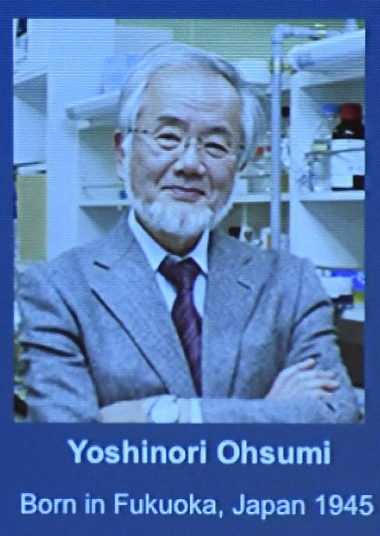 """นักวิจัยญี่ปุ่นรับ """"โนเบลแพทย์"""" จากการค้นพบกลไกกินตัวเองของเซลล์"""