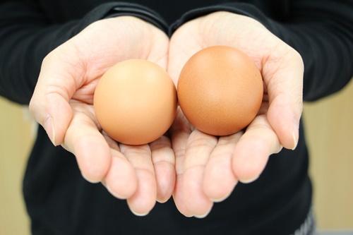 นักวิชาการชี้ไข่ไก่ประโยชน์เยอะ แนะทานได้ทุกวันช่วยสร้างสุขภาพแข็งแรง