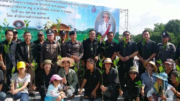ผู้การฯ ปทส.นำหลายหน่วยงานปลูกป่าเฉลิมพระเกียรติ ถวายเป็นพระราชกุศลแด่สมเด็จย่า