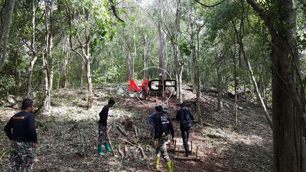 """เตรียมพื้นที่บวงสรวงตัด """"ไม้จันทน์หอม"""" ที่ อช.กุยบุรี จัดสร้าง """"พระบรมโกศ"""" 14 พ.ย.นี้ 4 ต้น"""
