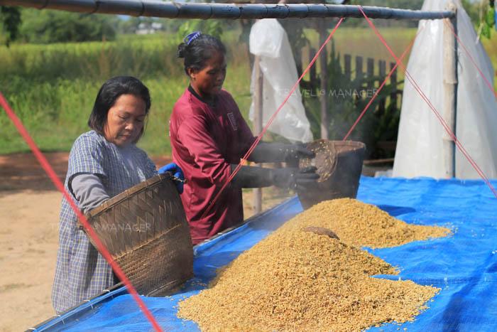 นึ่งข้าวแล้วก็นำมาตากแห้ง ก่อนจะนำไปสีให้ได้ข้าวฮางหอมอร่อย