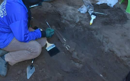 เจอเพิ่มอีก 1 โครงกระดูกมนุษย์ใต้วัดวิหารทอง พระราชวังจันทน์