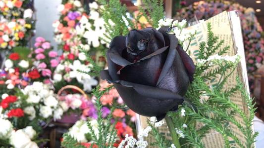 """ร้านดอกไม้เชียงใหม่สร้างสรรค์ทำ """"กุหลาบดำ""""สื่อความหมายรักอมตะวางขาย""""วาเลนไทน์"""""""