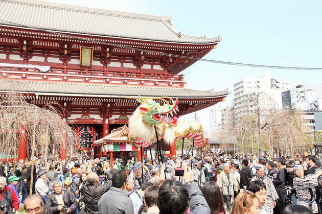 เทศกาลเชิดมังกรทอง ณ วัดอาซากุซะที่ 1 ปีมีครั้งเดียวเท่านั้น