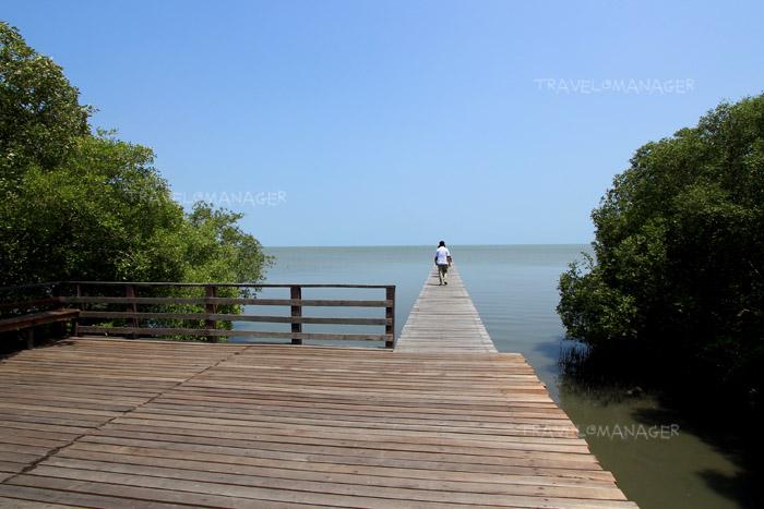 สะพานไม้ยาวทอดสู่ทะเล