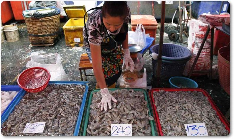 """Exclusive:สื่อนอกกัดไม่ปล่อยประมงเถื่อนไทย ยูเอ็นระบุ """"ไทยยังใช้แรงงานทาสเถื่อนต่อเนื่อง"""" จับปลาในน่านน้ำตัวเอง ปล่อยให้ถูกฆ่า-หิวจนตาย!"""