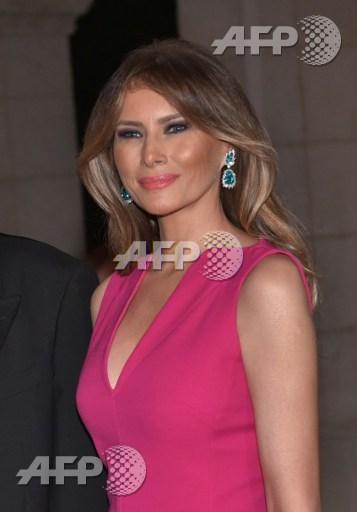 Melania Trump's new portrait divides public opinion