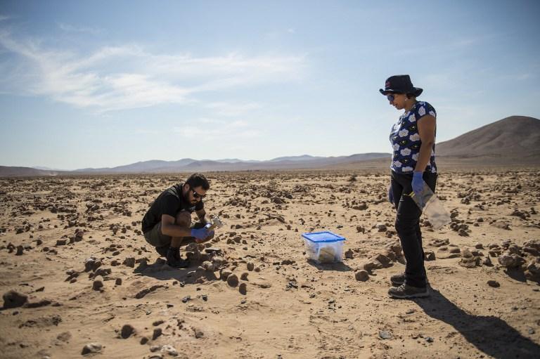 คริสตินา โดราดอร์ และโจนาธาน การ์เซีย (Jonathan Garcia) นักชีววิทยาชาวชิลี เก็บตัวอย่างหินในทะเลทรายอาทาคามาไปศึกษาสิ่งมีชีวิต (Martin BERNETTI / AFP)