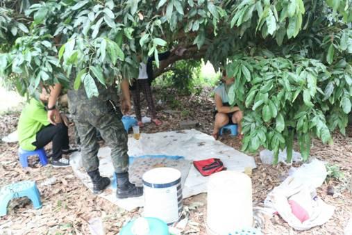 บุกจับบ่อนไฮโลสงกรานต์ลำพูน เซียนกระเจิง โดดน้ำกวงหนีจมดับ 1