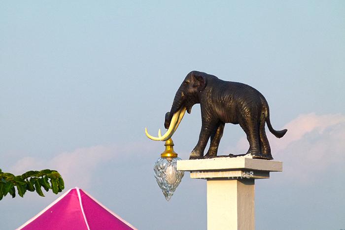 ช้างสเตโกดอนถูกนำมาสร้างประดับตามจุดต่างๆใน จ.สตูล
