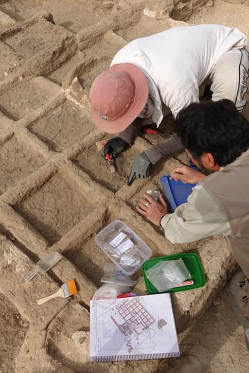"""ไม่เคยเจอมาก่อน """"สวนจำลอง"""" อายุ 4,000 ปี นอกสุสานอียิปต์โบราณ"""
