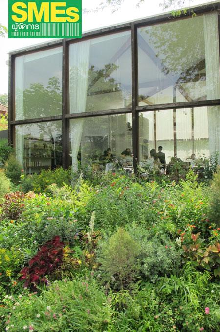 รอบๆ แวดล้อมด้านสวนสวยที่เต็มไปด้วยต้นไม้และดอกไม้นานาพันธุ์