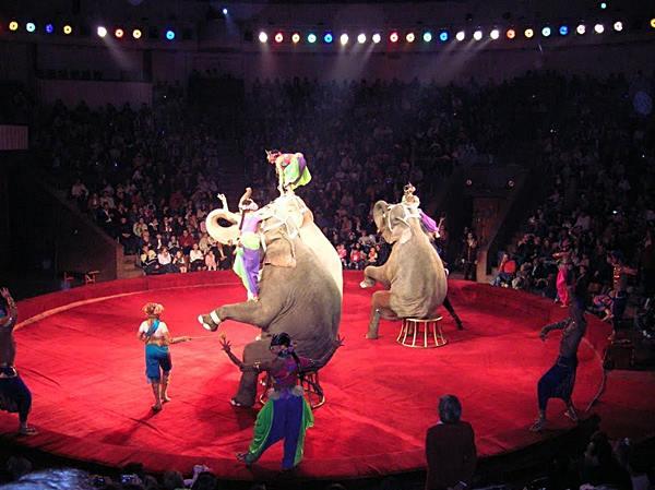 การแสดงช้างของคนไทยในต่างประเทศ