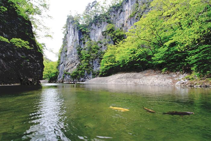หุบเขาเกบิเก งดงามไปด้วยบรรยากาศจากธรรมชาติสรรค์สร้าง