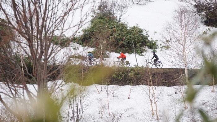 ปั่นจักรยานผ่านแนวหิมะขึ้นสู่ยอดเขาฮะจิมันไต(ภาพ : บี bkkwheels)