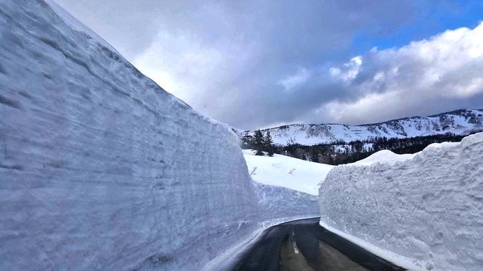 กำแพงหิมะ(Snow Wall) ฮะจิมันไต แอสไปต์ ไลน์(ภาพ : การท่องเที่ยวจังหวัดอิวาเตะ)
