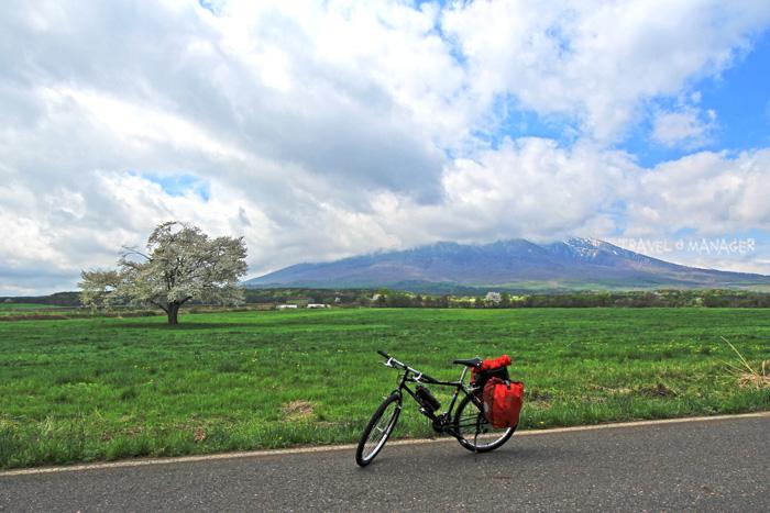 เส้นทางขากลับ(วันสุดท้าย)ปั่นผ่านซากุระเดียวดายอีกครั้ง