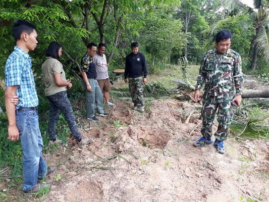 ทีมสัตวแทพย์ สำนักงานพื้นที่อนุรักษ์ที่ 7 นครราชสีมา วางแผนรักษาช้างป่าดงใหญ่ที่ถูกรถตู้ชนบาดเจ็บเมื่อเช้ามืดวันนี้