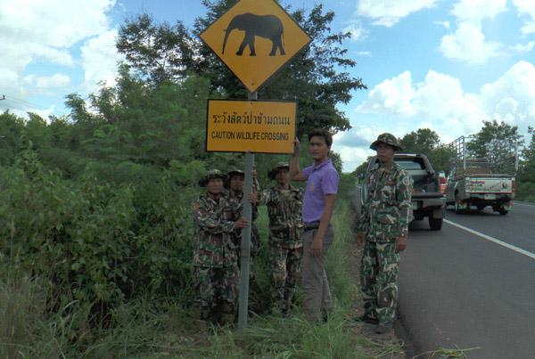 จนท. เขตรักษาพันธุ์ป่าดงใหญ่บุรีรัมย์เร่งติดป้ายแจ้งเตือนผู้ขับขี่ระวังสัตว์ป่าข้ามถนน หลังเกิดเหตุรถตู้จ้างเหมาพุ่งชนช้างป่าบาดเจ็บ 1 ตัวและผู้โดยสารนั่งในรถบาดเจ็บ 4 ราย วันนี้ ( 4 มิ.ย.)