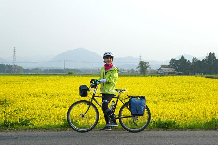 แวะถ่ายรูปกับทุ่งดอกไม้สีเหลืองสดใส