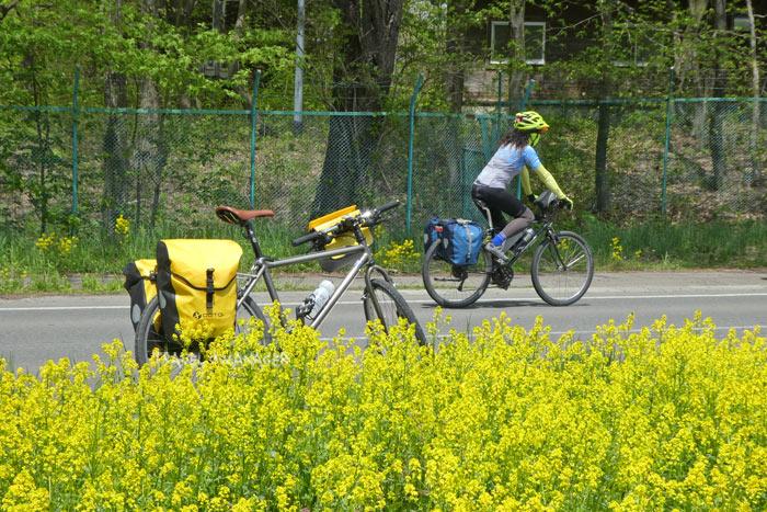 """""""อิวาเตะ"""" เมืองงามชวนหลงรัก จุดดักฝันของผู้รักการปั่นจักรยาน"""