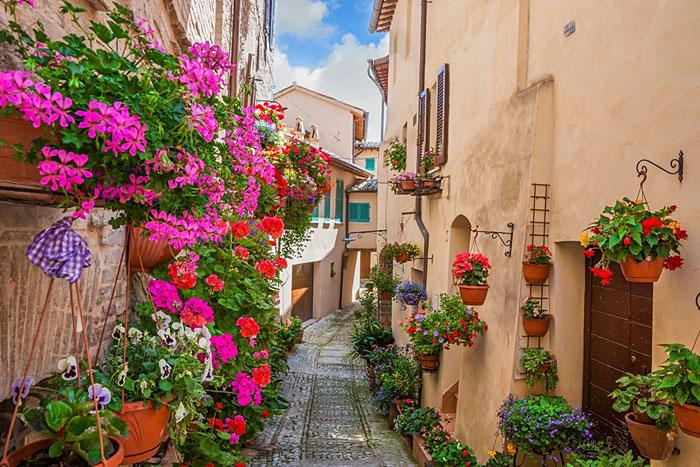 กระถางไม้ดอกหลากสีที่สเปลโล ประเทศอิตาลี  (ภาพ Booking.com)