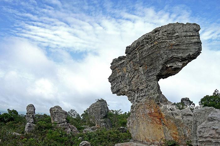 หินเรดาห์ สัญลักษณ์แห่งป่าหินงาม