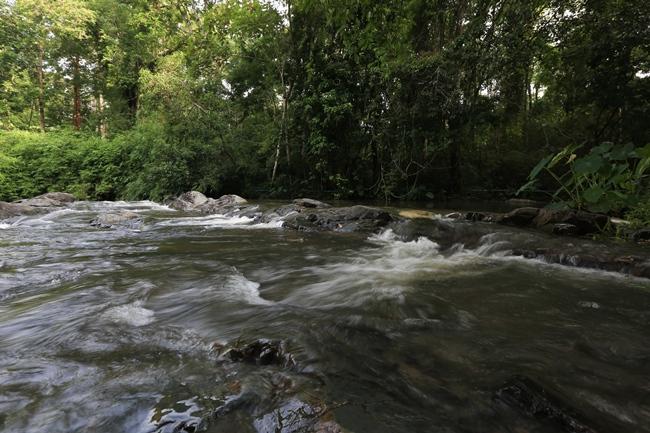 น้ำตกหินดาด ตั้งอยู่บนเทือกเขาสอยดาวใต้ ภายในเขตรักษาพันธุ์สัตว์ป่าเขาสอยดาว