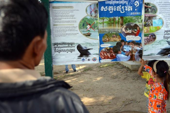 มีแต่เรื่องดีๆ พบลูกโลมาอิรวดีอีก 2 ตัวในแม่น้ำโขงกัมพูชา
