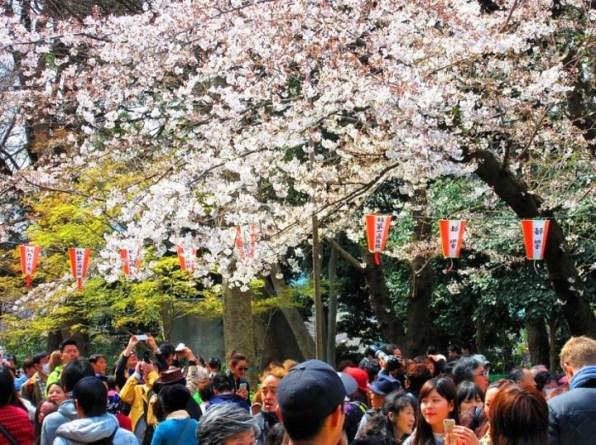 ญี่ปุ่นเล็งเก็บภาษีการท่องเที่ยว