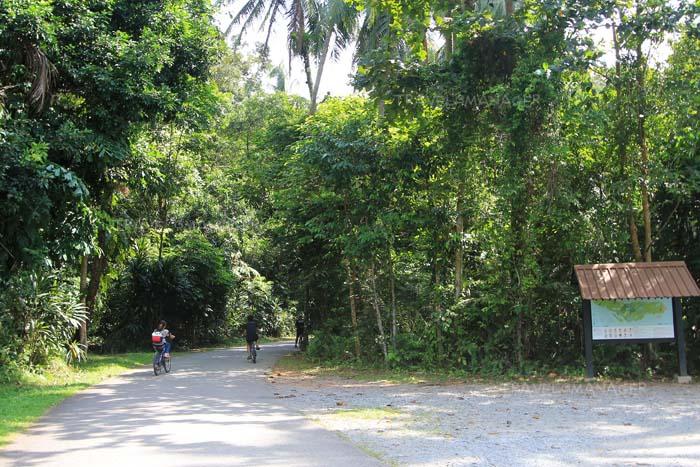 ทางปั่นจักรยานบนเกาะ