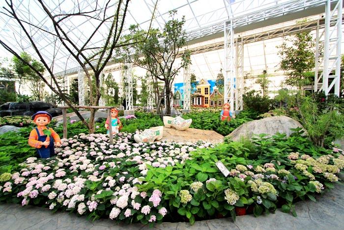 ชมดอกไม้งามที่อุทยานไม้ดอก เพ ลา เพลิน จ.บุรีรัมย์
