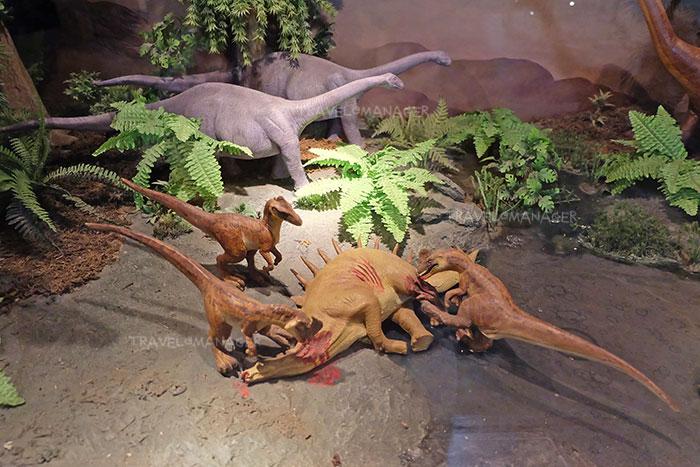 """ย้อนเวลาสู่ """"อีสานโบราณ"""" ตะลุยโลกล้านปี เยือนถิ่น """"ไดโนเสาร์ไทย"""""""