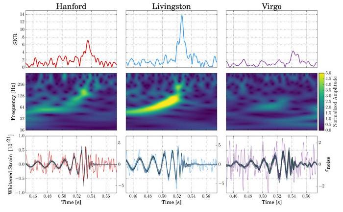 สัญญาณคลื่นความโน้มถ่วง GW170814 ที่ถูกตรวจวัดได้จากเครื่องตรวจจับ Advance LIGO ทั้ง 2 เครื่อง แสดงให้เห็นถึงความแตกต่างของสัญญาณระหว่างเครื่องตรวจจับ Advance LIGO และเครื่องตรวจจับ Advance Virgo ซึ่งสามารถอธิบายได้โดยการโพลาไรซ์ของคลื่นความโน้มถ่วง