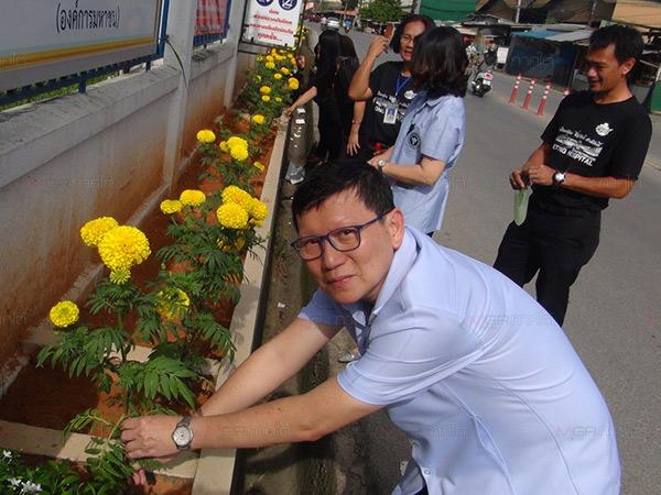 แพทย์-พยาบาล รพ.เบตง ระดมจัดดอกดาวเรือง รับช่วงพระราชพิธีถวายพระเพลิงพระบรมศพ