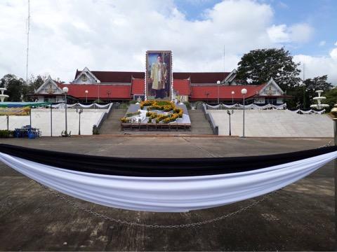 จันทบุรี เปิดโอกาสให้ประชาชนนำต้นดาวเรืองมาประดับตามลายเส้นพ่อหลวง