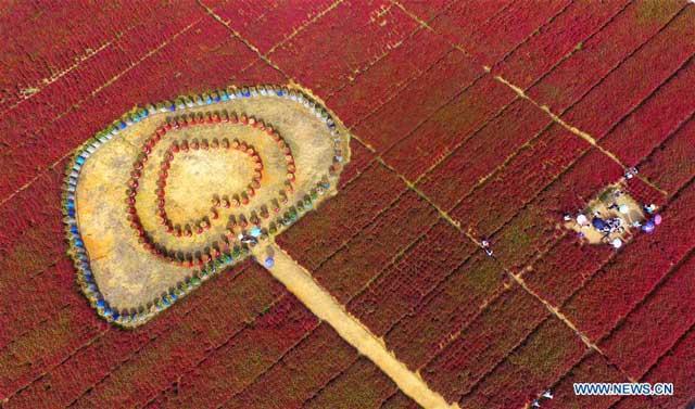 เฉิงกวง เขตปกครองตนเองก่วงซีจ้วง, 6 ต.ค. 2560