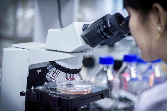 การค้นหาจุลินทรีย์เพื่อผลิตเอนไซม์