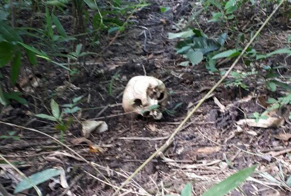 """พบแล้ว! ศพ """"ผอ.อ้อย"""" อบต.ศรีสะเกษ ถูกอุ้มหายกว่า 3 เดือน ในป่าชายแดนใกล้ฐานทหาร"""