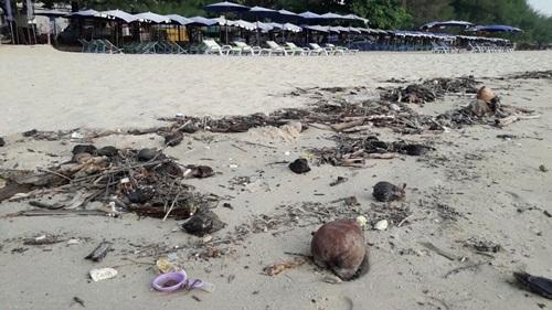 ถึงชะอำ..ขยะทะเลจำนวนมากถูกคลื่นซัดเกยหาดยาวกว่า 4กม.