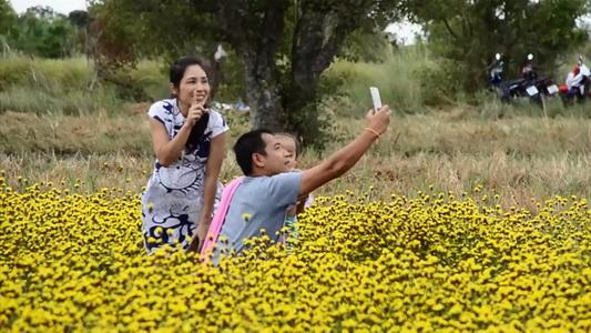 นักท่องเที่ยวแห่ชมดอกเหลืองทิพวรรณ ออกดอกรับลมหนาวเต็มทุ่งนาที่เมืองอุบลฯ