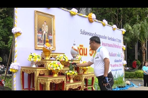 """ชาวพังงากว่า 1 พันคน ร่วมโครงการ""""แสงนำใจไทยทั้งชาติ เดิน วิ่งปั่น ป้องกันอัมพาต"""