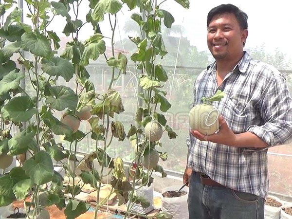 หนุ่มตรังพลิกที่ดินเตรียมสร้างคอนโดฯหรู ผันทำฟาร์มเกษตร 4.0 จนสำเร็จ