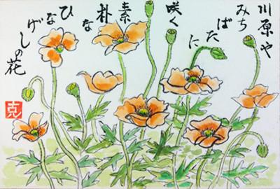 เปรียบมินะโกะดั่งดอกป๊อบปี้อันบอบบาง (ดอกฮินะเงะชิ)