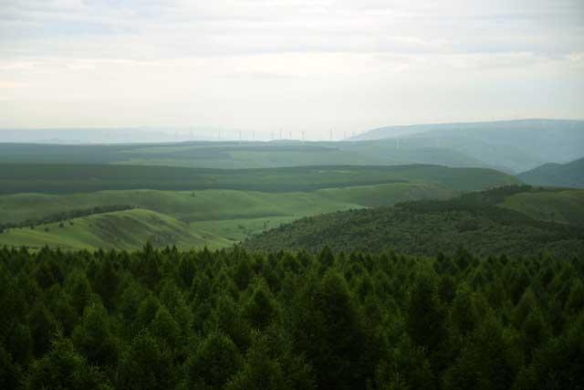 ยูเอ็น ยกย่องเกียรติยศสูงสุดด้านสิ่งแวดล้อม ให้โครงการปลูกป่าที่ใหญ่ที่สุดในโลกของจีน
