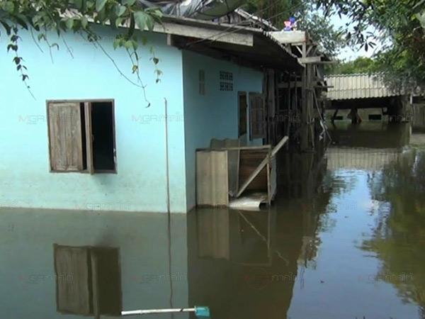 น่าห่วงกว่า 40 ครัวเรือนเมืองตรัง เผชิญน้ำท่วมขังนานกว่าครึ่งเดือน เริ่มส่งกลิ่นเหม็น